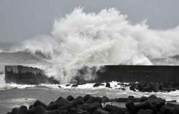wild_wave.jpg